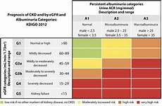 Ckd Stages Chart The Detection And Management Of Patients With Chronic