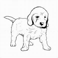 kleurplaat golden retriever pup puppy theme on