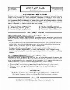 Non Profit Resume Mentoring Program Modern Non Profit Executive Page2 Non Profit Resume Samples