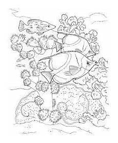 bildergebnis f 252 r malvorlagen unterwasserwelt coloring