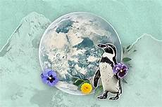 Malvorlagen Umweltschutz Selber Machen 10 Tipps Zum Umweltschutz Im Alltag In 2020 Etiketten