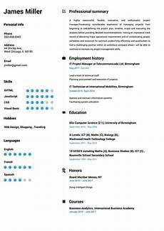 Build Professional Resume Create A Perfect Resume In 5 Minutes Online Resume Builder