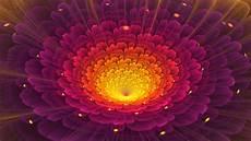 flower wallpaper 31 jpg fractal hd wallpaper background image 1920x1080 id