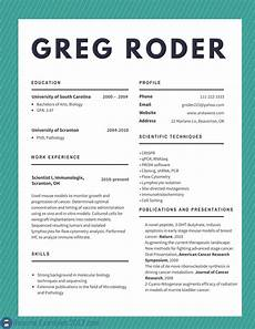 Best Cv Samples Download Best Cv Examples 2019 To Try Resume Examples 2019