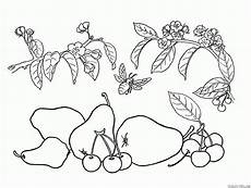 malvorlagen obst werden kinder zeichnen und ausmalen