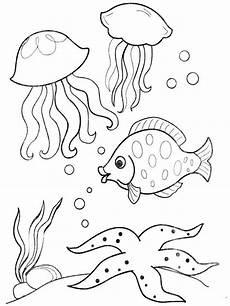 Malvorlagen Unterwasserwelt Pflanzen Malvorlagen Unterwasserwelt Ausmalbilder Kostenlos Zum