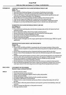 Resume For Child Care Director Child Care Manager Resume Samples Velvet Jobs