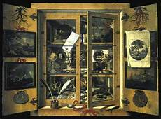 cabinet of curiosities from eighteenth century