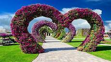 Nice Wedding Background Beautiful Nice Animation With Natural Flower Scenery