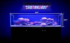 Saltwater Fish Tank Lights Amazon Com Wattshine 180w Led Coral Light Large Angle