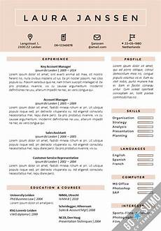A Cv Example Where Can You Find A Cv Template