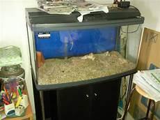 3 Foot Fish Tank Light Singapore Big Sale Many 2 To 4 Feet Fish Tanks For Sale