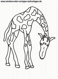 Malvorlagen Tiere Zum Ausdrucken Xl 016 Ausmalbilder Tier Kostenlos Malvorlagen Zum Ausdrucken