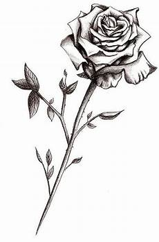 Rose Designs Rose Designs The Body Is A Canvas