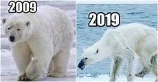 10 Years From Now The Confronting 10 Year Challenge Meme You Need To See