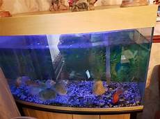 3 Foot Fish Tank Light 3 Ft Fish Tank With Cupboard West Bromwich Sandwell