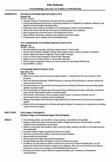 Customer Relationship Executive Resume Customer Service Executive Resume Samples Velvet Jobs