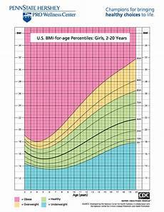 Girl Bmi Percentile Chart Inner Image Interpreting Your Results