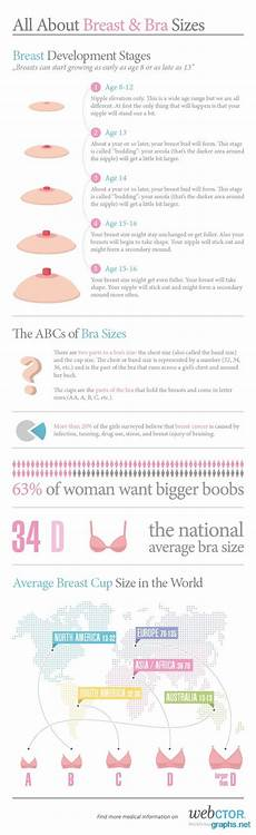 Different Breast Sizes Chart Girls With Developing
