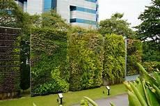 Vertical Green Green Walls Singapore Hortpark Green Walls Vertical