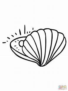 ausmalbild muschel mit perle ausmalbilder kostenlos zum
