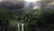 Rainforest Background Tropical Rainforest Wallpaper 183 Wallpapertag