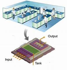 Lab On Chips Lab On A Chip Device Left Principle Of Integration Of