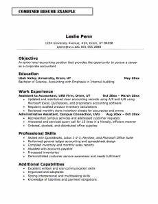 Sample Combination Resume Combination Resume Definition Format Layout 117 Examples