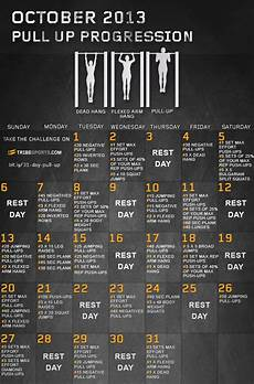 Muscle Symmetry Chart Have You Started The 31 Day Pull Up Progression Challenge