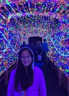 Los Angeles Zoo City Lights Experience L A Zoo Lights At The Los Angeles Zoo Real