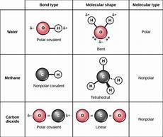 Molecule Vs Atom Covalent Bonds Biology For Majors I