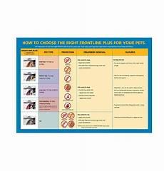 Frontline Plus Dosage Chart For Dogs Frontline Plus Flea Control Dog 10kg 20kg Swanbourne Vet