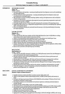 Experienced Hr Analyst Resume Hr Analyst Resume Samples Velvet Jobs