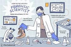 Investigation Jobs Forensic Science Technician Job Description Salary