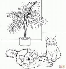 Malvorlagen Katzenbilder Ausmalbilder Katzen Malvorlagen Kostenlos Zum Ausdrucken