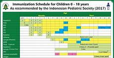 Baby Vaccination Chart India 2017 With Price Vaccination For Children In Indonesia Things You Need To