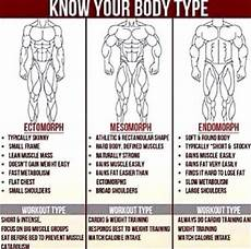 Muscle Symmetry Chart How To Develop Muscle Symmetry With Weird Body Shapes