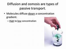 what type of transport is osmosis ppt cell membrane diffusion amp osmosis active transport