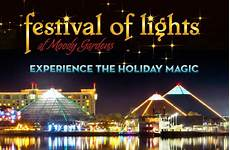 festival of lights moody gardens 2017 self advocate trip to moody gardens the arc of greater