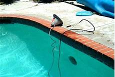 How To Change Pool Light Bulb The Steps It Takes To Change A Pool Light Las Vegas Pools