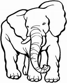 Elephant Printable Free Elephant Coloring Pages