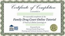 Fake Course Certificate Final Quiz For Certificate Of Completion Family Drug