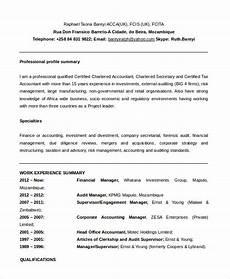 Functional Resume Template Pdf 10 Functional Resume Templates Pdf Doc Free