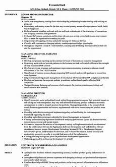 Resume Managing Director Managing Director Resume Samples Velvet Jobs