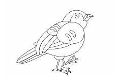 Malvorlage Vogel Kinder Malvorlage Vogel Malvorlagen Tiere Zum Ausmalen