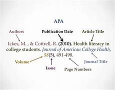Apa Format Structure Apa Essay Structure Apa Format 12 Basic Rules You Must