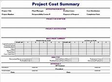 Project Summary Template Project Cost Summary Template Blue Layouts
