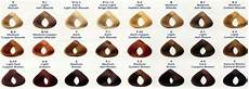 L Oreal Professional Colour Chart Loreal Hair Color Chart Excellence Creme Google Search