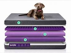 the purple pet bed unboxing review