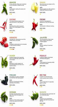 Chili Heat Chart The Gallery For Gt Types Of Chili Peppers Chart